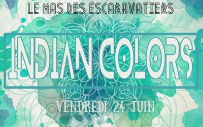 Spectacle Danses Indiennes